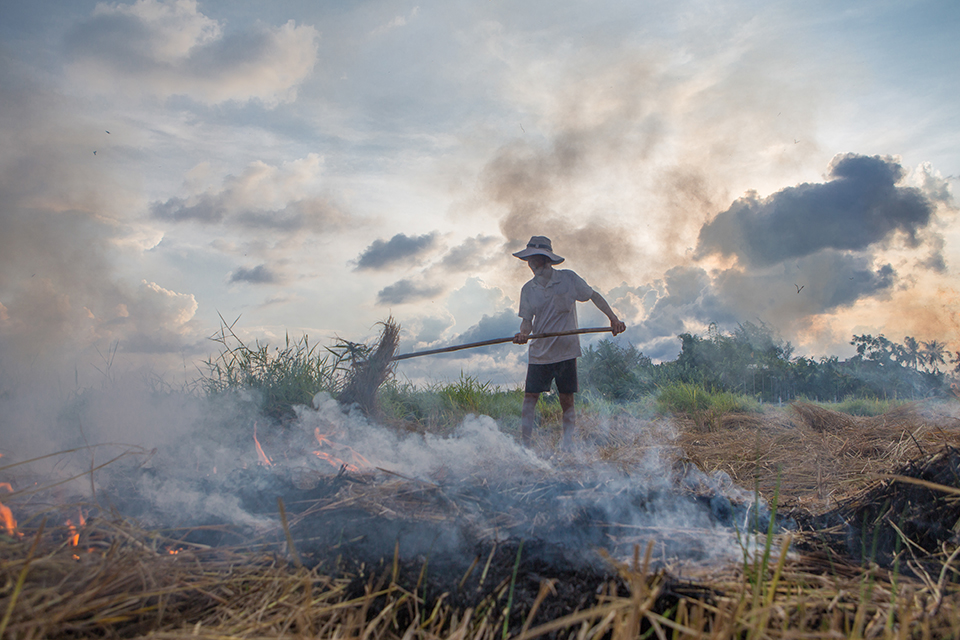 This photo is part of CRS' best photos of 2018, it's climate change and agriculture in vietnam.