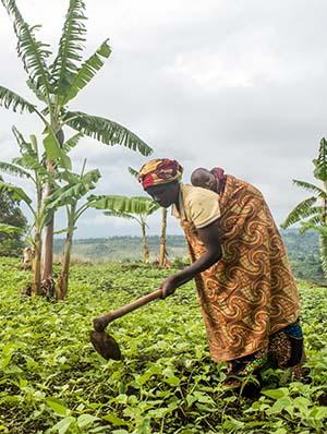 Burundi farmer