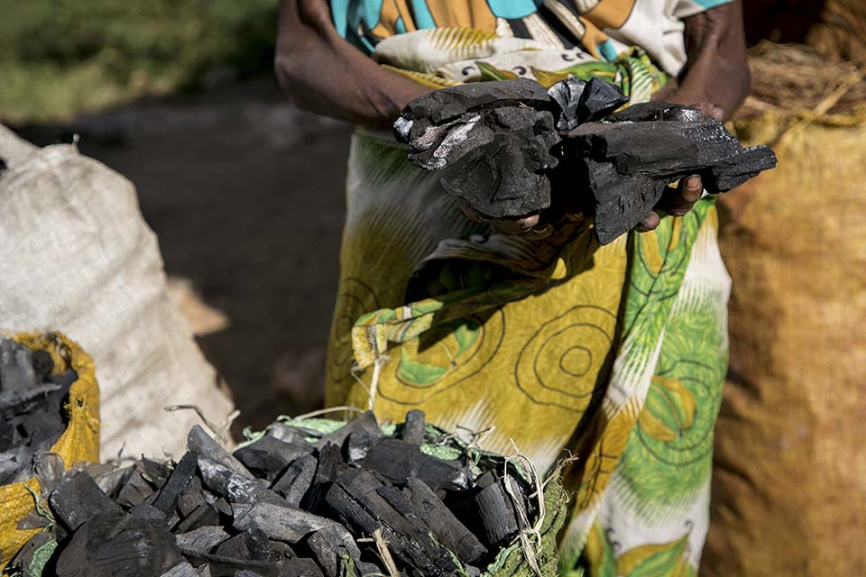 charcoal in Madagascar