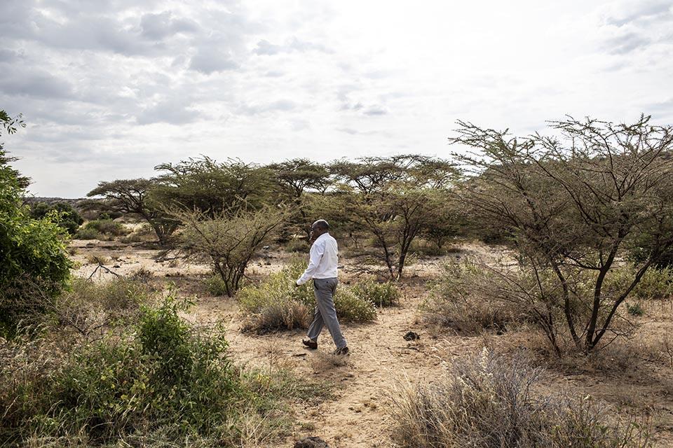 checking field in Kenya