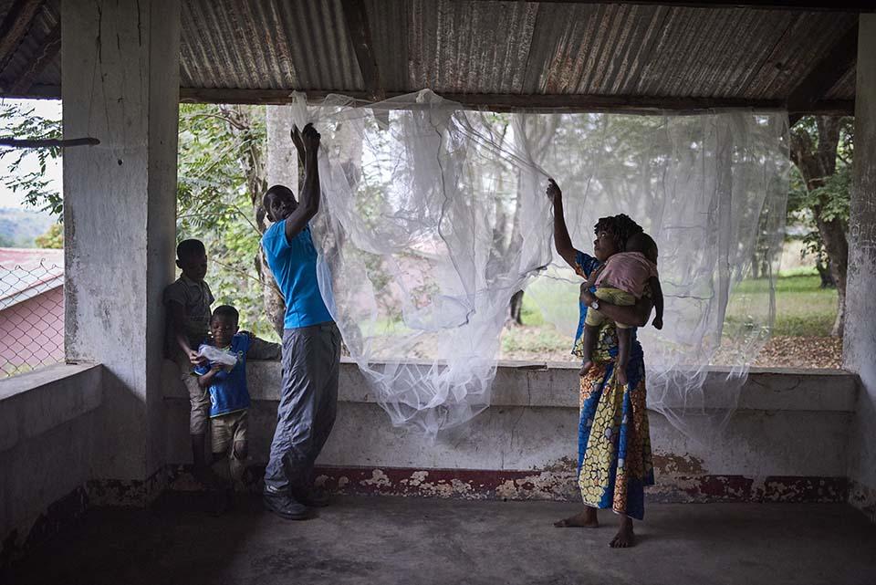 Republic of Congo couple hang bed net