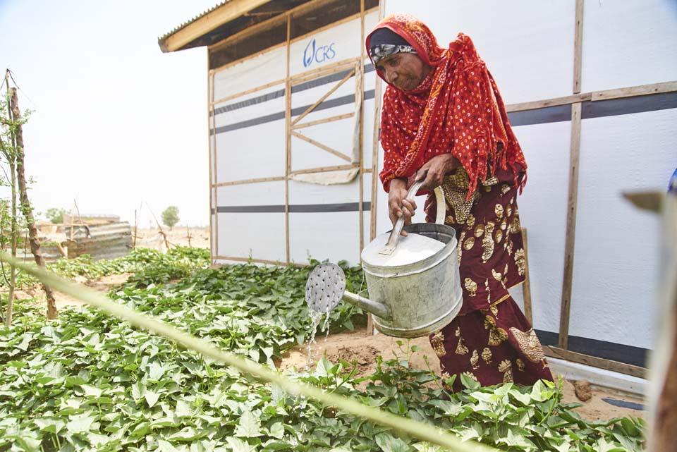 displaced Nigerian watering garden