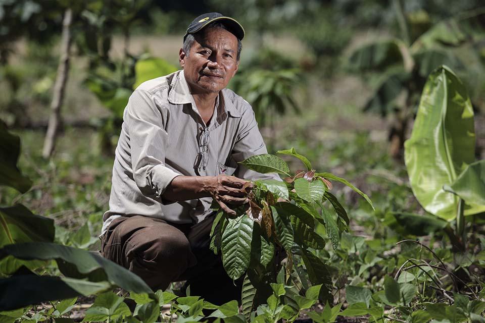 El Salvador cacao producer