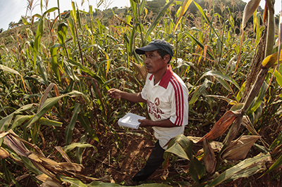 Climate change means rains are scarce for farmlands in La Loma Community, El Salvador. CRS is helping farmers like Lorenzo Antonio Leon plant corn using new agricultural practices that keep moisture in the ground. Photo by Oscar Leiva/Silverlight for CRS