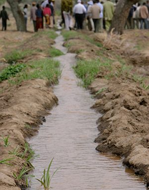 In the community of Dire Kiltu, in the Meki diocese, residents dug terraces that hold in the rain when it does come, raising the water table. Photo by Jim Stipe/CRS