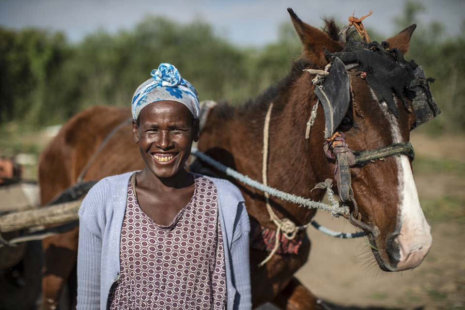Ethiopian farmer with horse cart