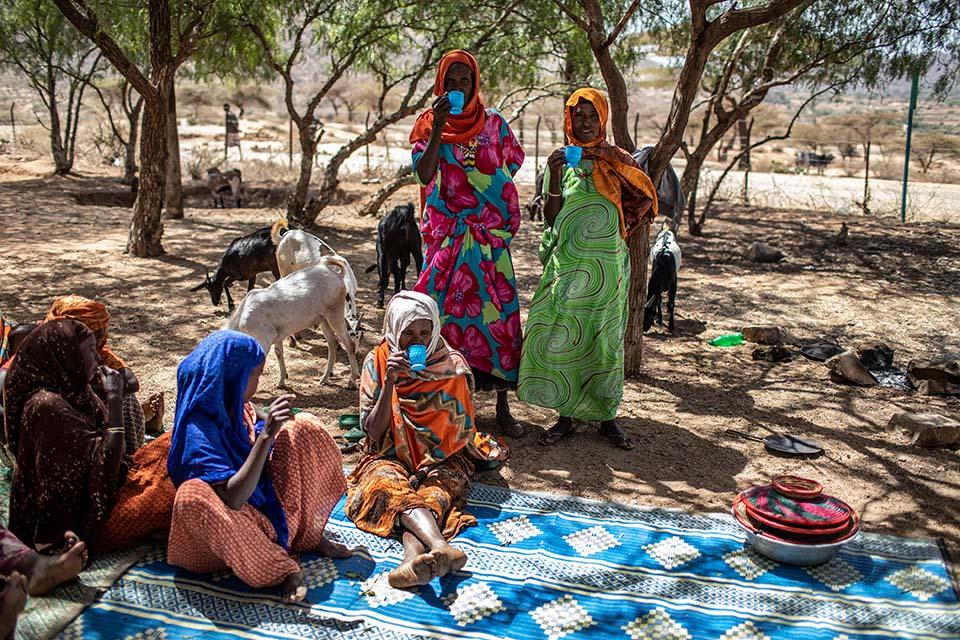 Ethiopian women involved in food security activities