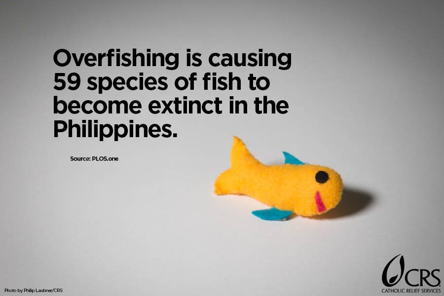 Overfishing is causing 59 species of fish to become extinct in the Philippines.