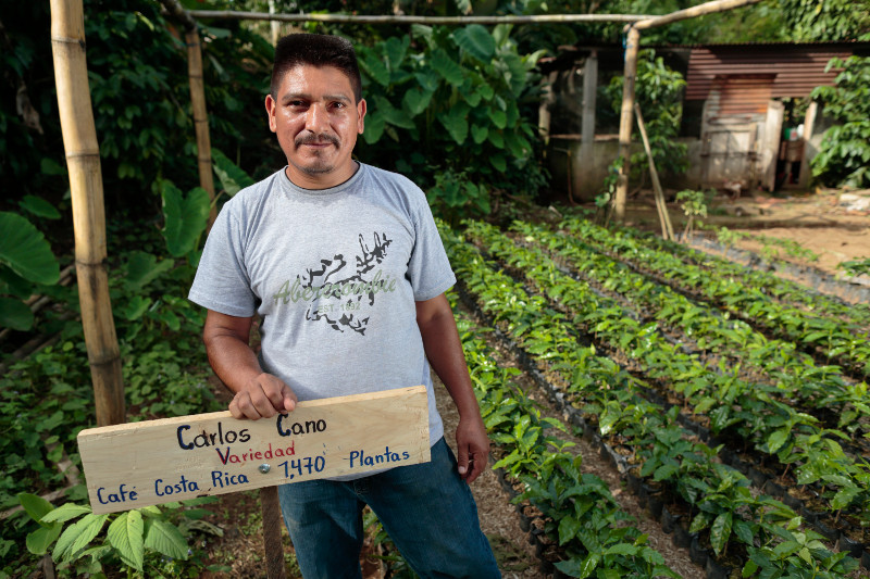 Carlos Cano with the seedlings he is growing. CRS helps coffee farmers in Guatemala bounce back from the devastation caused by coffee leaf rust. Photo by Oscar Leiva/Silverlight for CRS