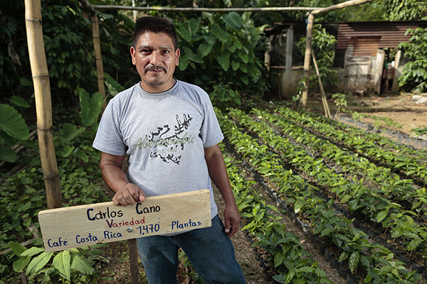 Carlos Cano stands in a coffee cooperative's plant nursery in San Marcos, Guatemala. The cooperative receives technical support from Catholic Relief Services. Photo by Oscar Leiva/Silverlight for CRS