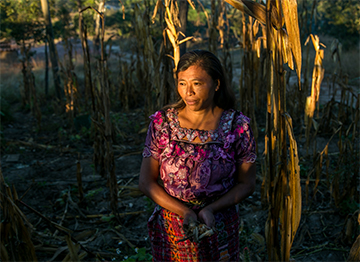 Cristina Garcia and her family live in Guatemala's Dry Corridor, where rainfall fluctuation and climate change have drastically reduced crop yields.