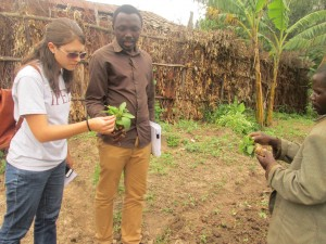 Jerica with Janvier, the food security team leader, and a coffee grower, right, in the Keurig Green Mountain project, who shows one of his crop seedlings. The project helps farmers improve agriculture and business practices to grow their livelihoods.