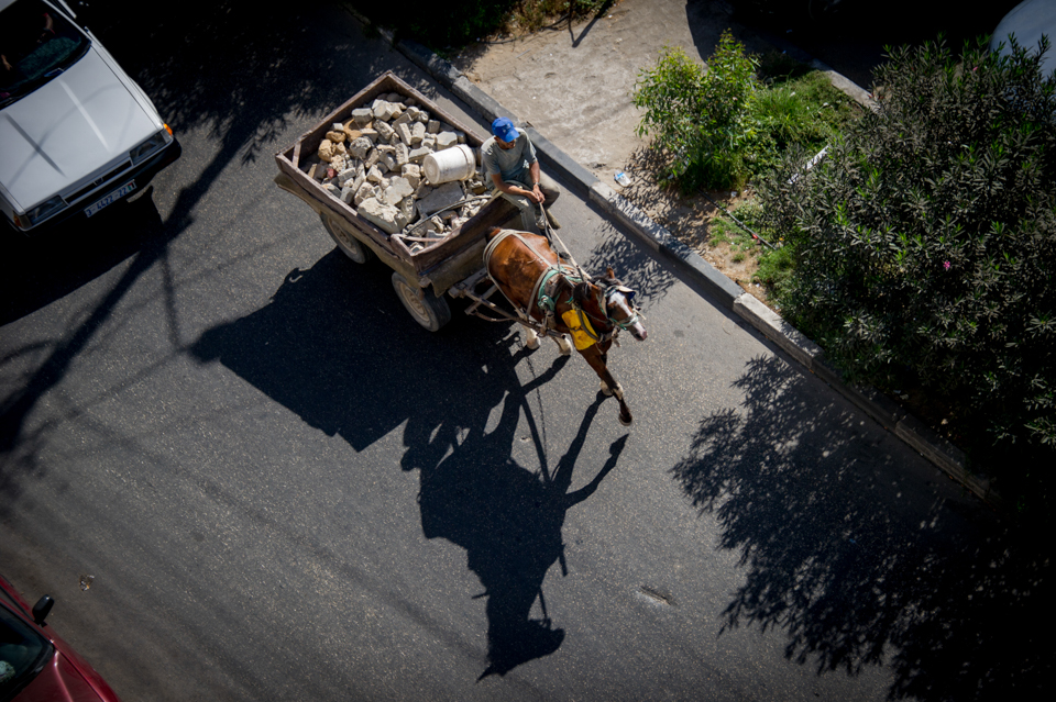 horse pulls cart in Gaza