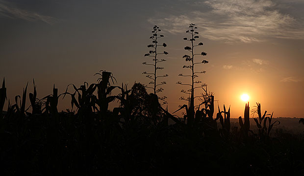 The sun rises over the village of Rabango, Kenya. Photo by Sara A. Fajardo/CRS