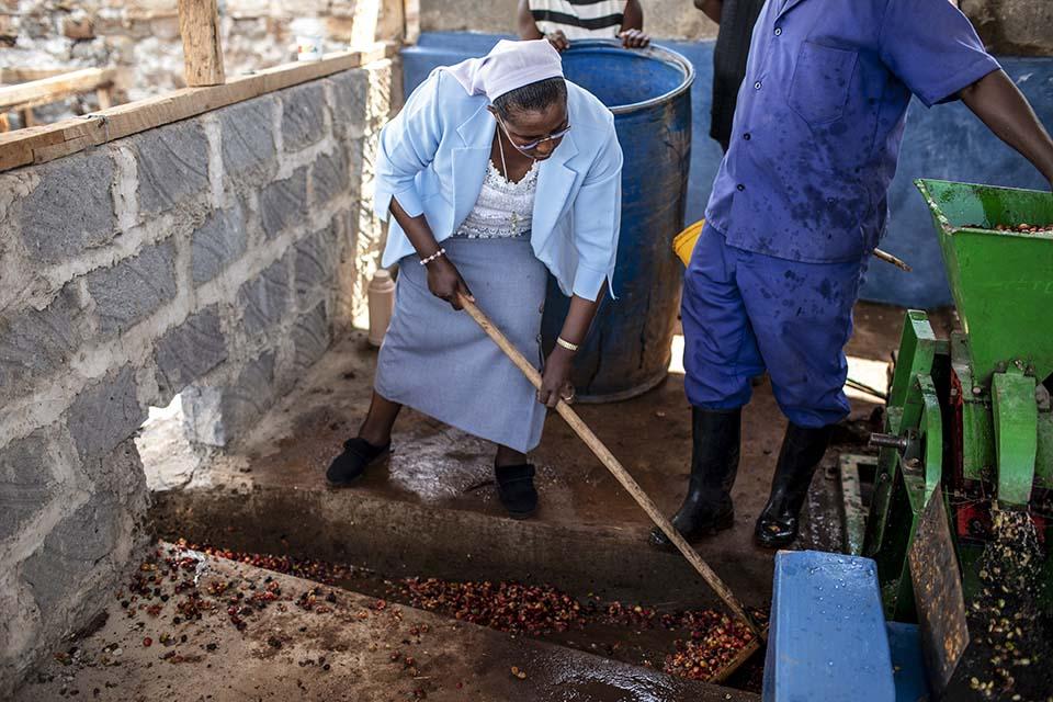 coffee wet mill in Kenya