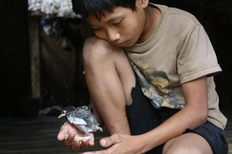 boy with bird in Laos