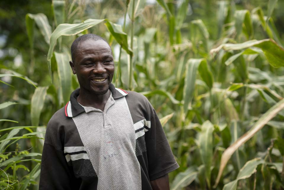 Malawi farmer in field