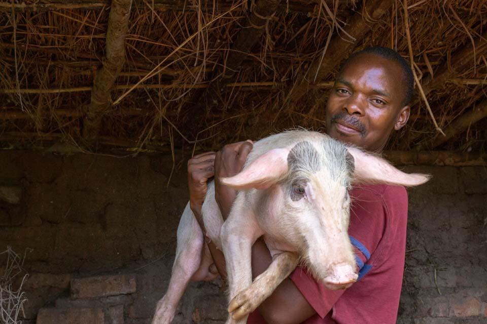 Malawi farmer with pig