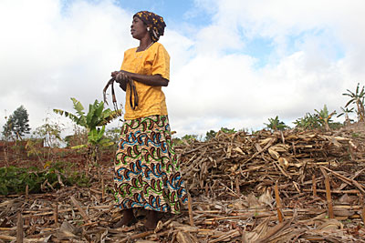 Mary Kamangeni surveys her cornfields in Malawi. To help improve her crop yields, she uses conservation agricultural methods—including crop rotation, composting and mulching—she learned from a CRS-led partnership. Photo by Sara A. Fajardo/CRS