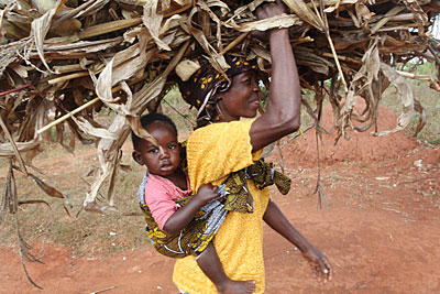 Mary Kamangeni carries her grandson Trust while she gathers dried-up cornstalks to spread in her fields to help retain water and nurture the soil. Photo by Sara A. Fajardo/CRS