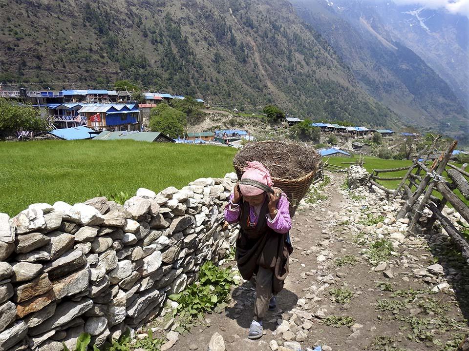 Nepal woman carrying large basket