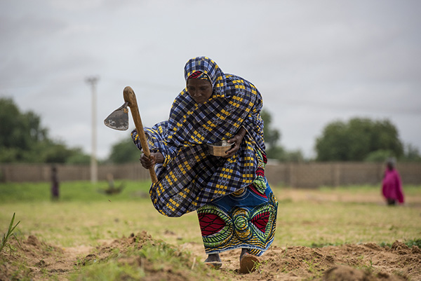 With support from the Feed the Future Nigeria Livelihoods Project, Kulu Asarara has expanded her farm and her projects. Photo by Michael Stulman/CRS