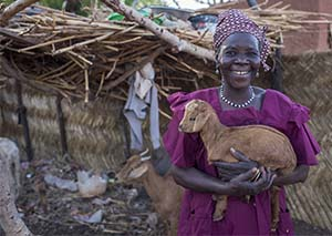 Niger farming