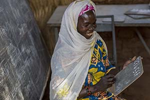 Niger literacy