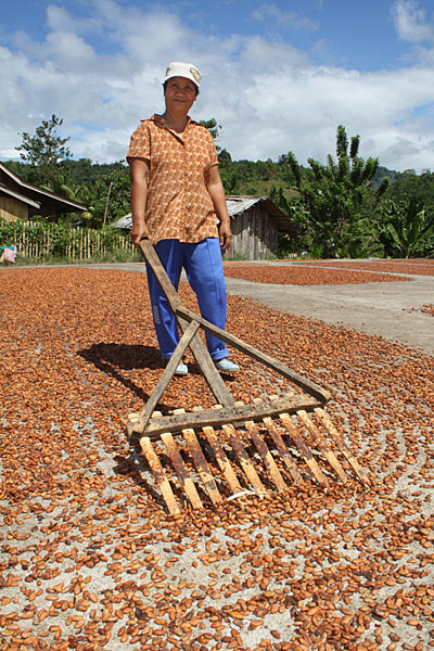 Mary Mercy Pelaez, a widow with 8 children, rakes cacao beans. She supports her family with profits from her cacao sales. Photo by Laura Sheahen/CRS
