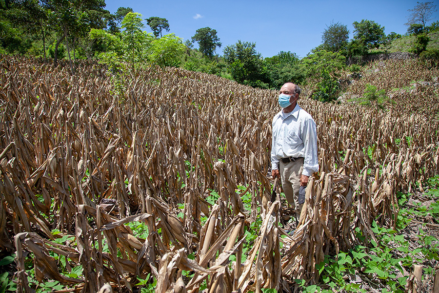 A farmer in Guatemala stands in his field. Using water-smart agriculture, he has been able to improve his harvest.