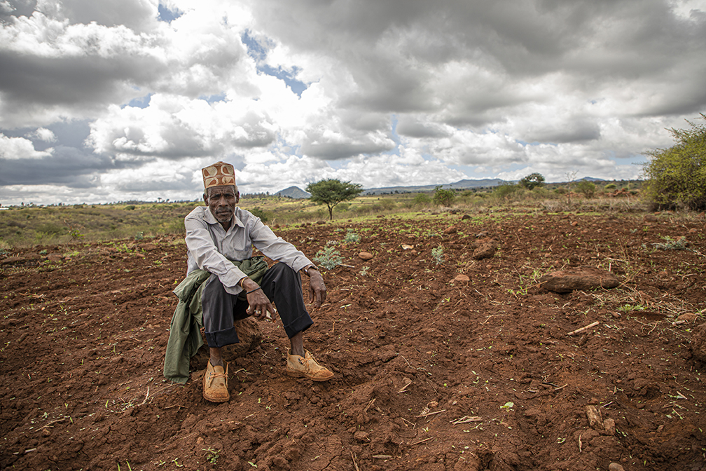 A farmer in Kenya sits in the middle of his farm, which has been overwhelmed by locusts.