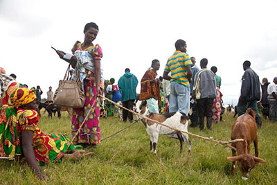 Therese Umuhire of Rwanda looks at the goat she just purchased with a CRS voucher and sees much more—a cow. Photo by Laura Elizabeth Pohl for CRS.