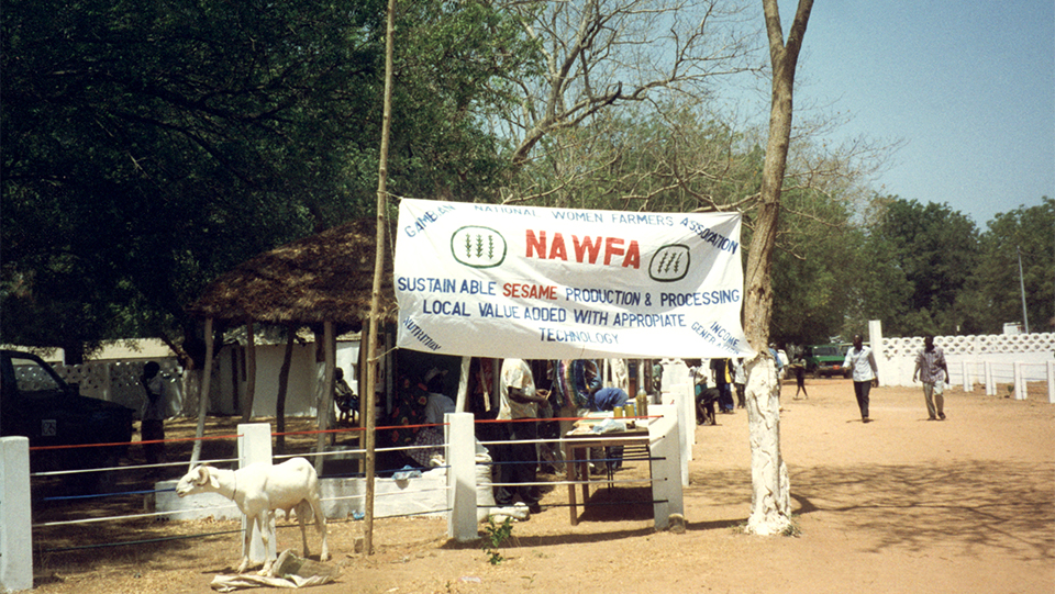 sesame growers association in The Gambia