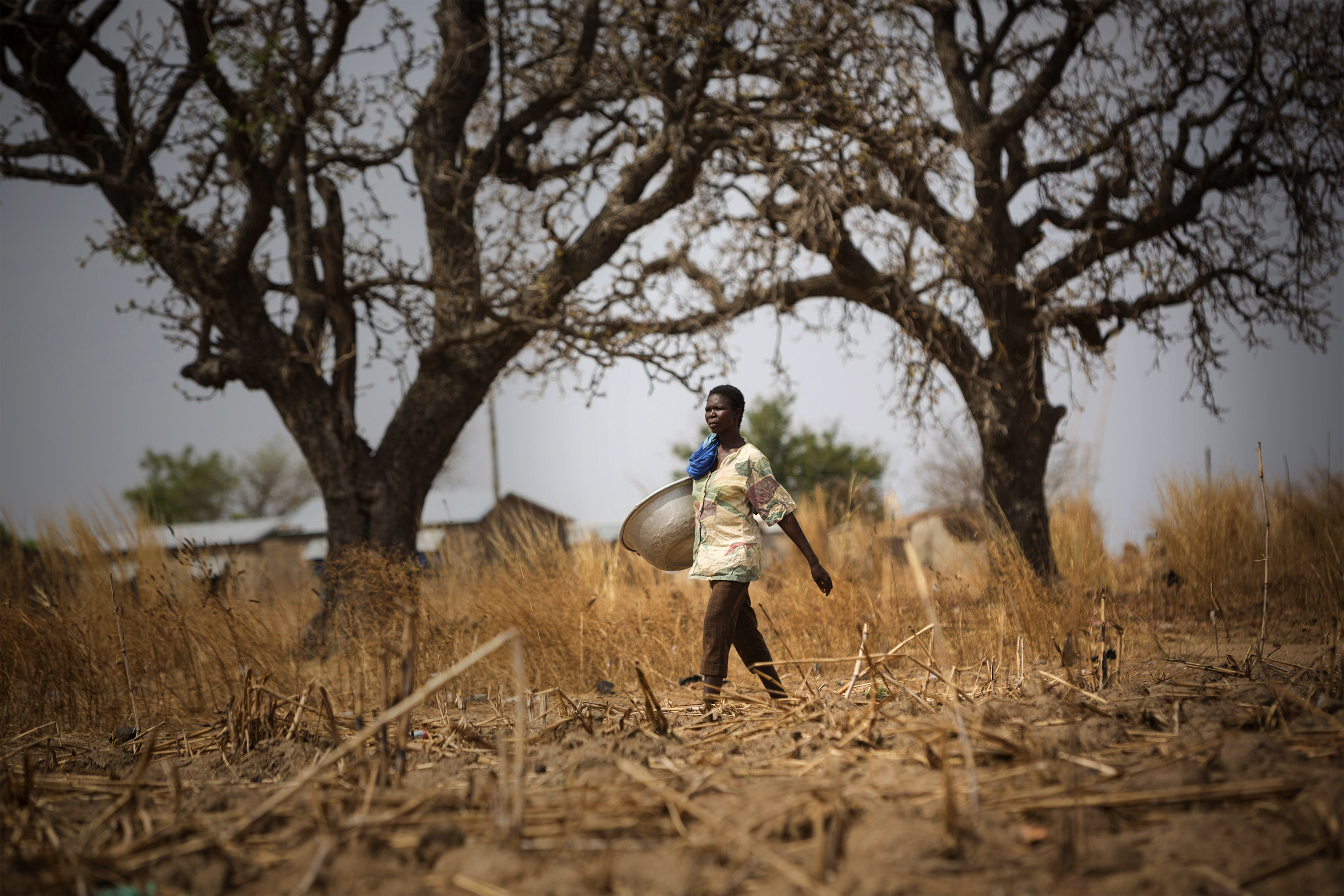 About 70% of the population depends directly or indirectly on agriculture (fisheries, crop and animal farming) and the forest sector. Photo by Jake Lyell for CRS