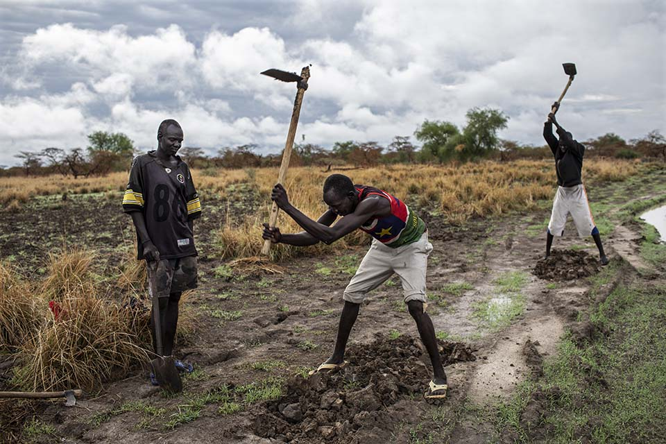 South Sudanese road crew swinging hoes