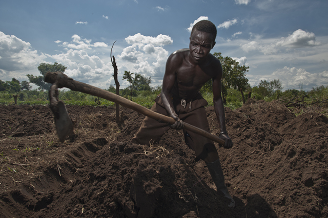 Tekwaro Onyala prepares his field near Nimule, South Sudan, for sweet potatoes. Photo by Karen Kasmauski for CRS