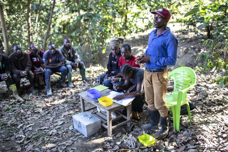 Tansania coffee producer group