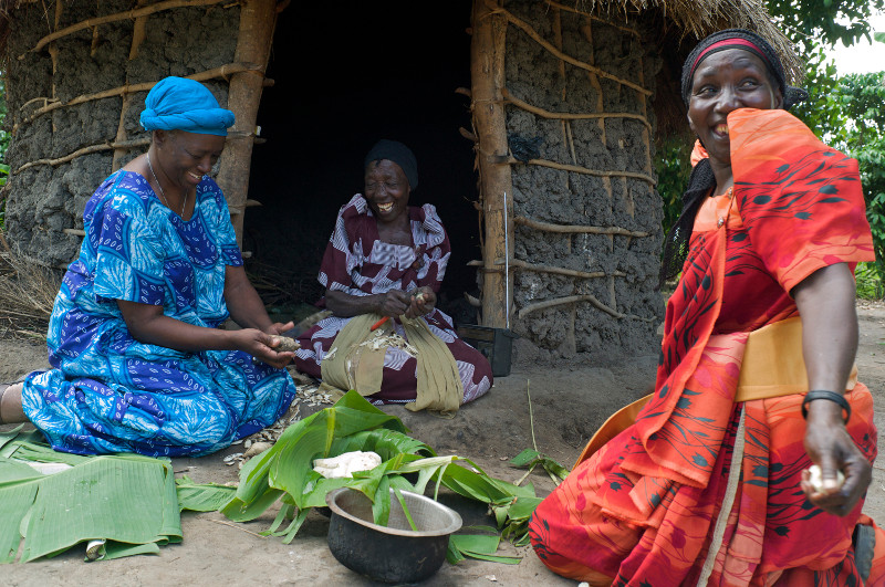 Farmer-to-Farmer volunteer Velma Gwishiri, left, converses with Nakitende Maimuna, right, and her mother Hajati Nulu, center, as they cut sweet potatoes. Ric Francis for CRS