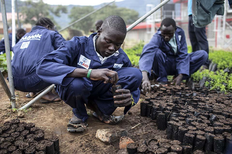 Uganda agroforestry students