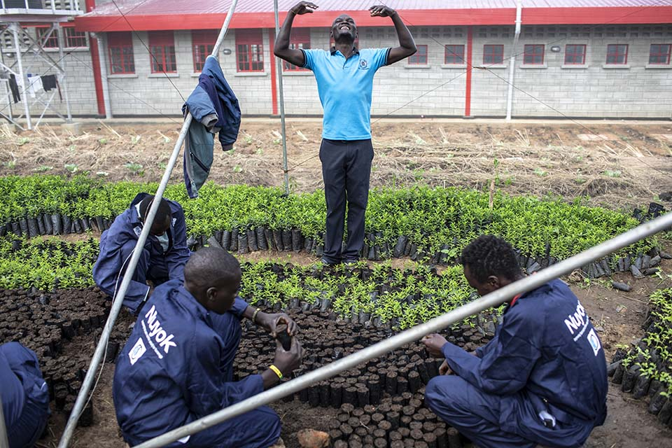 Uganda agroforestry instructor
