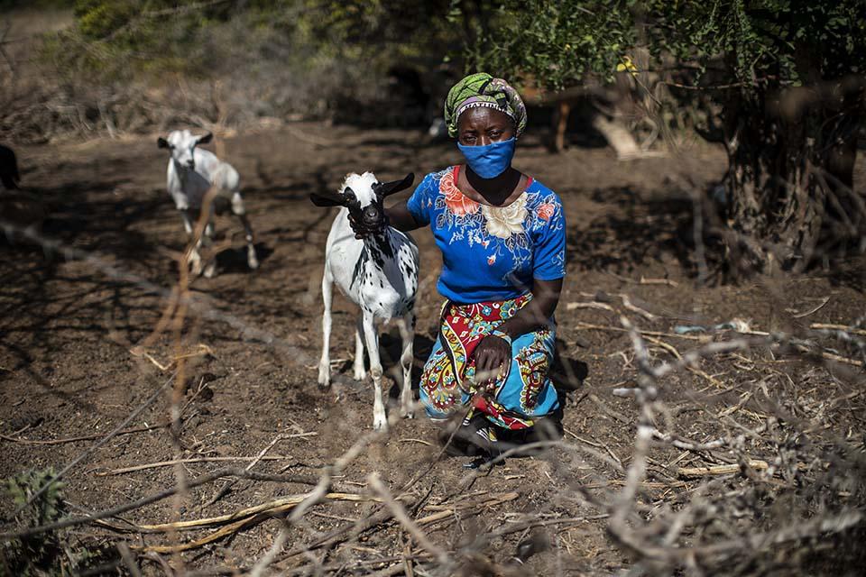 woman tending her goats in Kenya