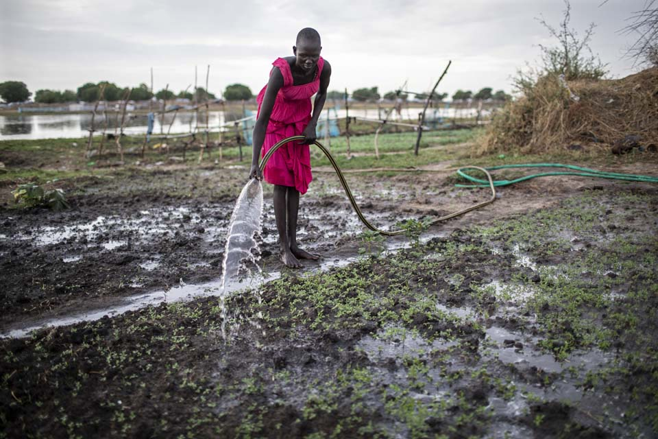 woman watering crops in South Sudan