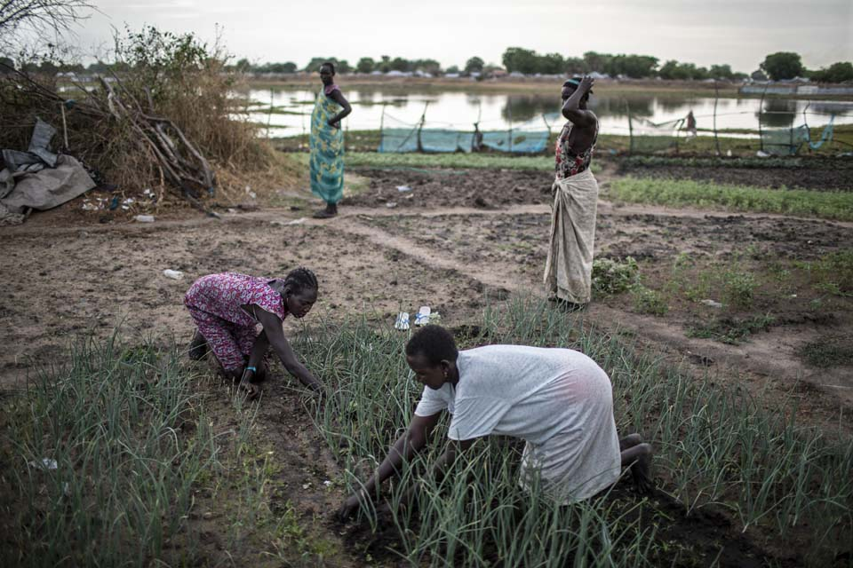 women farming in South Sudan