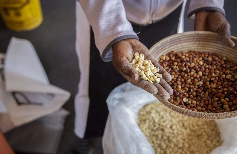 Zimbabwe stored grain