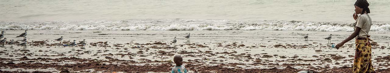 Gambia shoreline