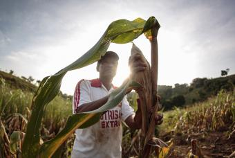 Lorenzo Antonio Leon of El Salvador  has planted corn using new agricultural practices that keep moisture in the ground. Photo by Oscar Leiva/Silverlight for CRS
