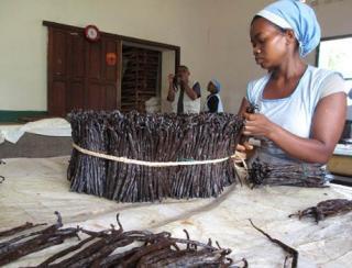 Vanilla in Madagascar