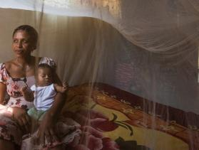 Nets for Crush Malaria