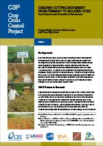 Cassava Cutting Movement from Primary to Bulking Sites (Burundi)