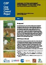 Cassava Cutting Movement from Primary to Bulking Sites (Burundi)